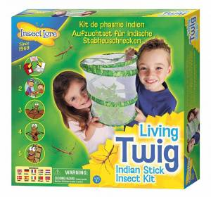 Living Twig Kit